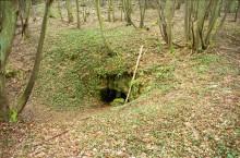 Bois des Buttes tunnelingang
