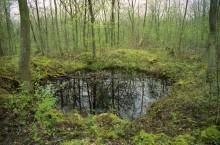 Bois des Buttes craters
