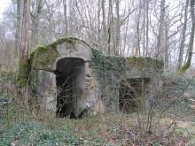 Bois de Bezange 5022