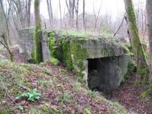 Bois de Bezange 5435