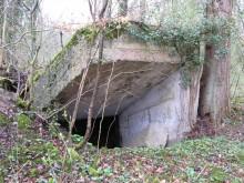 Bois de Bezange