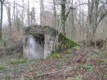 Bois de Bezange 5455