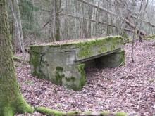 Bois de Bezange 5606